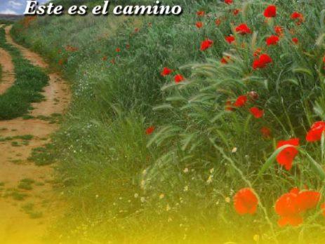 Congreso de Medicina Estètica de Castilla La Mancha